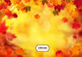 "Фон стена ""Autumn wall №1"""